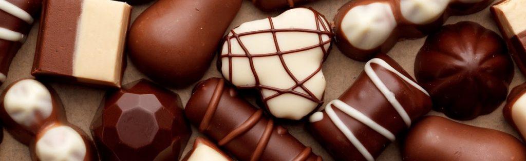 Chocolat : produit toxique pour les chiens